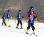 """2019""""双板五级""""滑雪明星冬令营"""