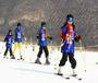 """""""双板五级""""滑雪明星冬令营"""